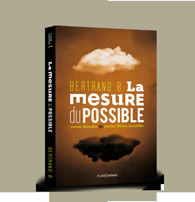 La Mesure du Possible, contes absurdes et petites fêlures invisibles, un roman de Bertrand B.